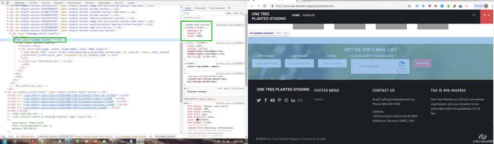 one_tree.jpg
