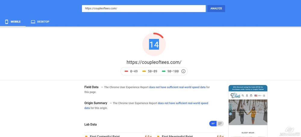 2019-11-07_13-49_PageSpeed Insights.jpg