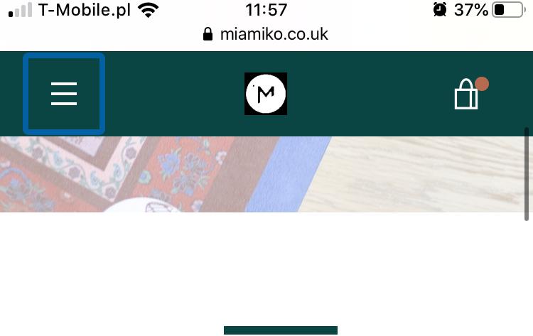 Bad quality logo - mobile