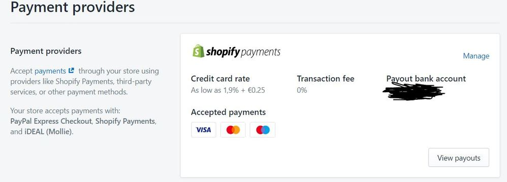 Shopify payments.JPG