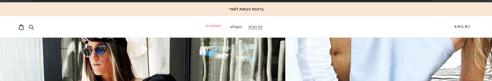 the contact do not appear in the actual site