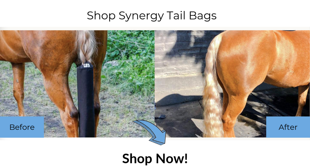 Shop Synergy Tail Bags.png