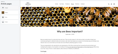 Bee_Bodhi_0-1606413426569.png