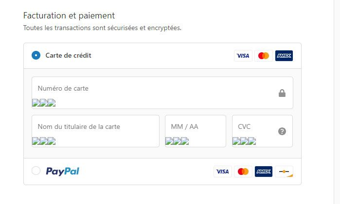 Shopify-payment-checkout.jpg