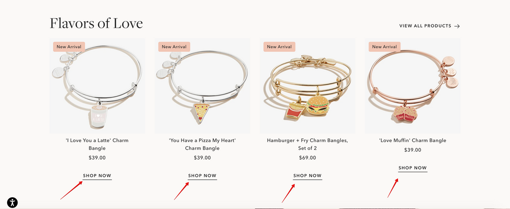 Charm Bangles, Charm Bracelets + More - ALEX AND ANI 2021-01-14 11-57-11.png