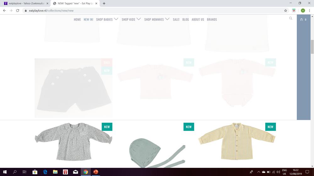 Bug webshop/ google chrome - Shopify Community