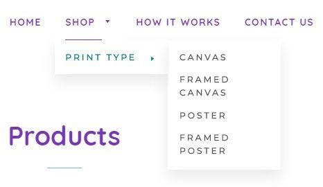 ShopifyDropdown.jpg
