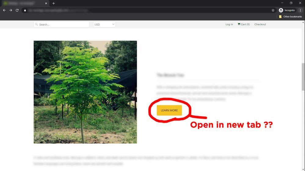 shopify_ext_link_new_tab.jpg