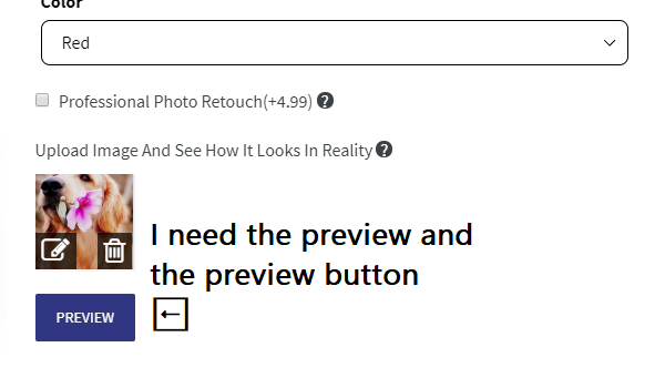 custom preview button.png